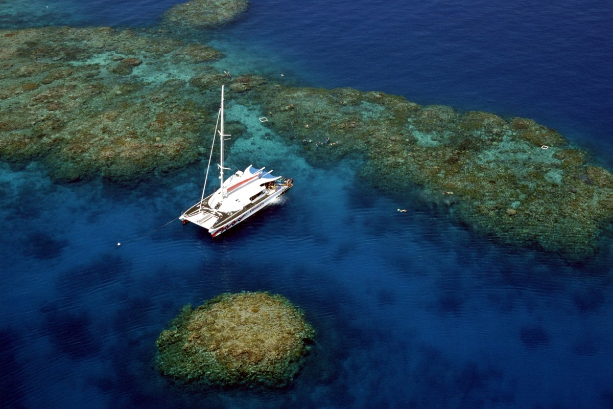 Passions of Paradise at the Great Barrier Reef